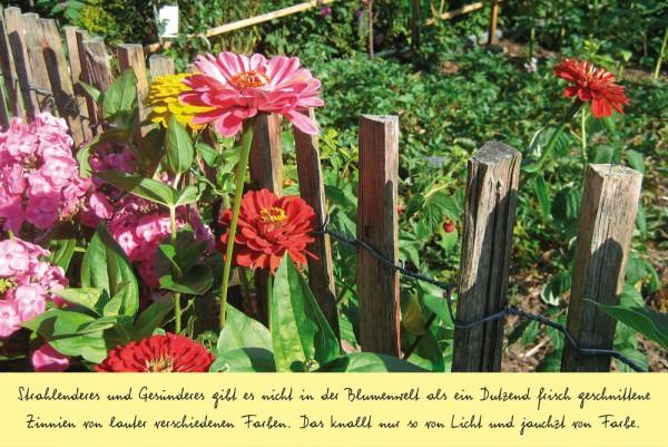 Briefkarten: Hesse - Gartenweisheiten
