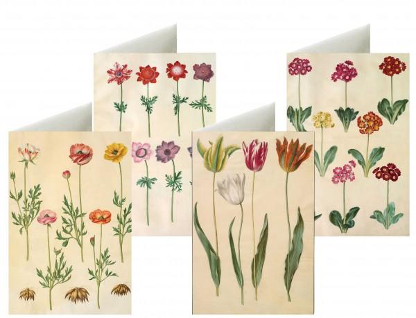 Briefkarten: Zarte Blüten