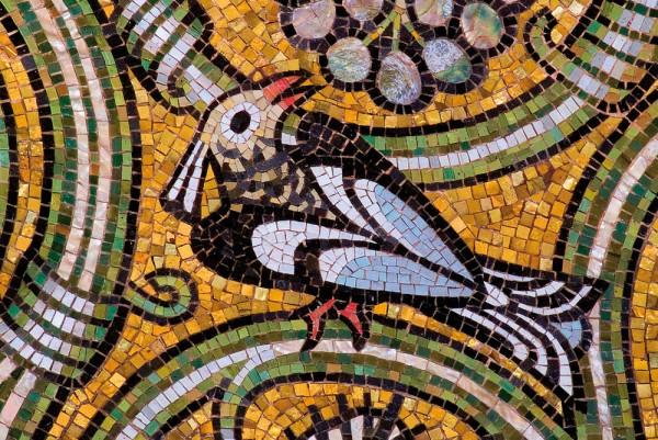Briefkarten: Vogelgezwitscher