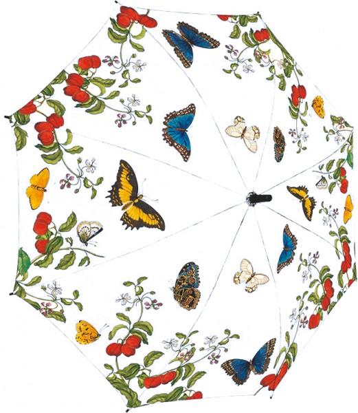 Schirm Merian Schmetterlinge