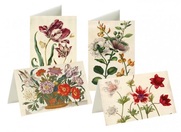 Briefkarten Blumenwelt Merian