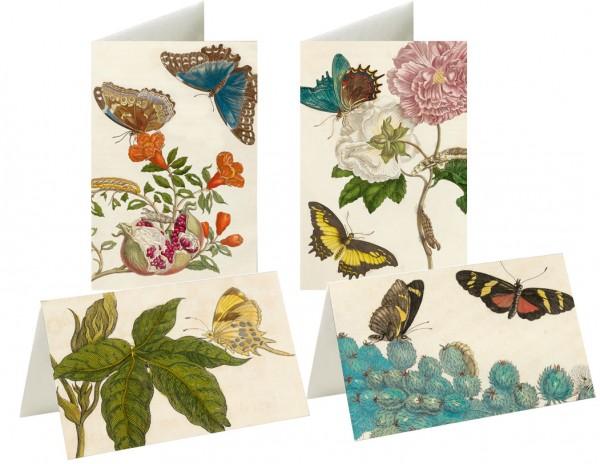 Briefkarten: Wunderwelt Merian
