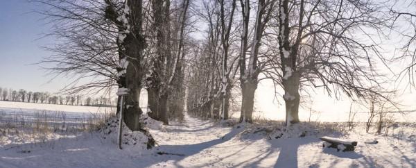 Premiumkarten: Winterwege