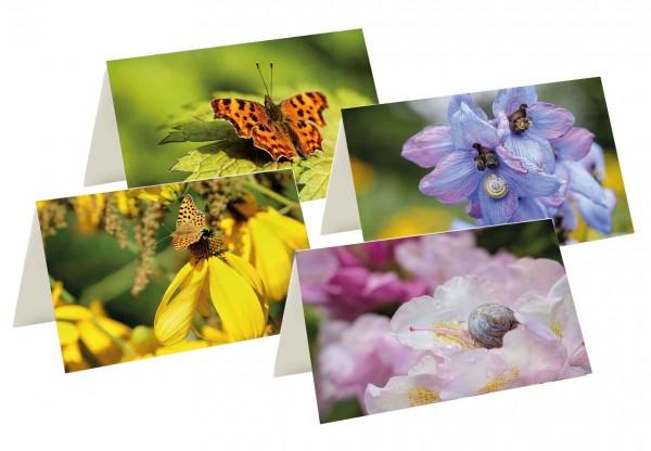 Briefkarten: Blütenbesuch