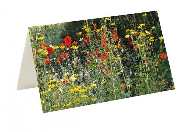 Briefkarten Sommer im Foerster-Garten