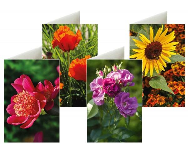 Briefkarten: Blütenstars