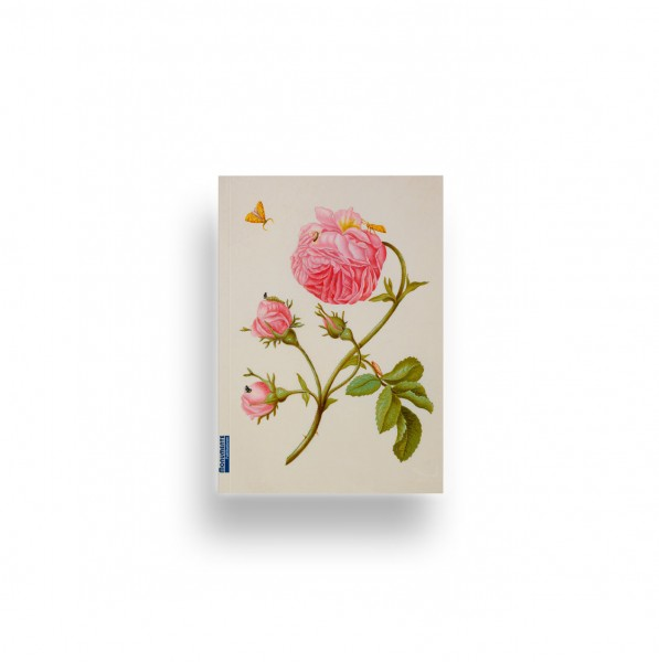 Notizbuch Denk-mal-an Rose Merian